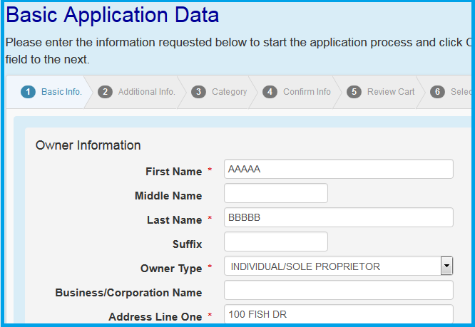 basic application data page